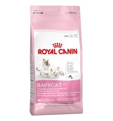 Royal Canin Mother & Babycat 4Kg