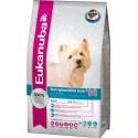Eukanuba Cão West Highland White Terrier