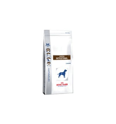 Royal Canin Gastro Intestinal 14Kg