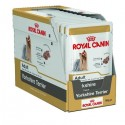 Royal Canin Yorkshire Terrier Adult, Cão, Húmidos, Adulto, Alimento
