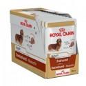 Royal Canin Dachshund, Cão, Húmidos, Adulto, Alimento