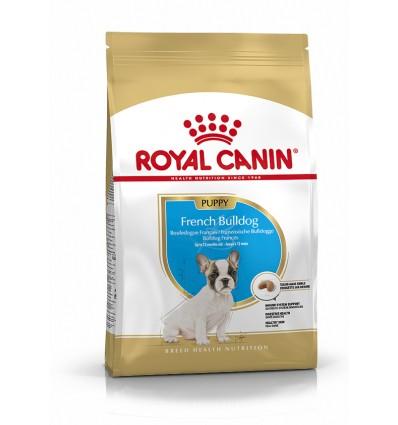 Royal Canin French Bulldog Junior, Cão, Seco, Júnior, Alimento/Ração