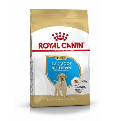 Royal Canin Labrador Retriever, Cão, Seco, Júnior, Alimento, Ração