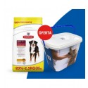 Hill's Science Plan Canine Adult Large Breed Frango 12kg + 2,5Kg OFERTA