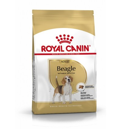 Royal Canin Beagle Adult, Cão, Seco, Adulto, Alimento/Ração