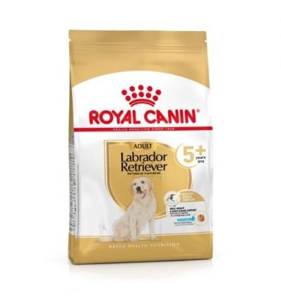 Royal Canin Labrador Retriever, Cão, Seco, Adult, Alimento/Ração