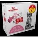 Royal Canin Pack Kitten Sterilised, Alimentação Seco, Oferta Manta + Vale