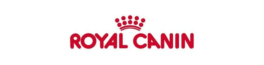 Royal Canin Gatinhos