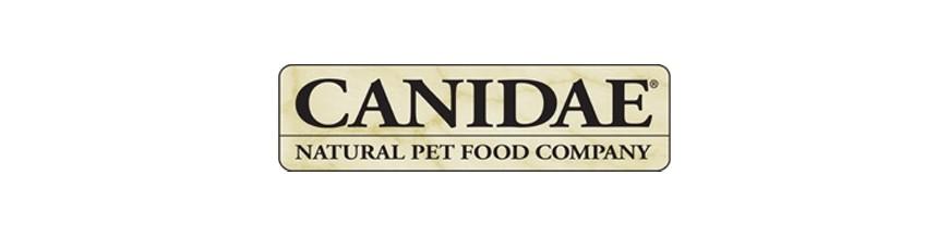 Canidae Gatos