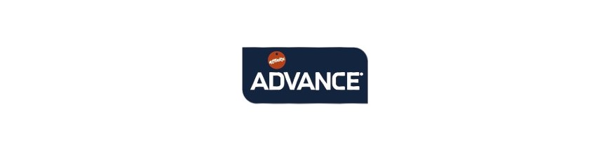 Advance Adultos
